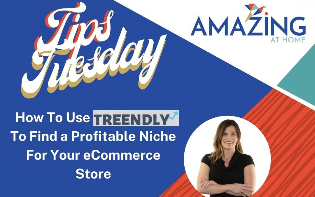 How To Use Treendly To Find A Profitable Niche For Your eCommerce Store